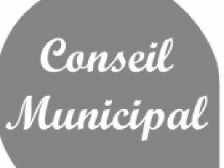 2014 CR conseil municipal du 19 août