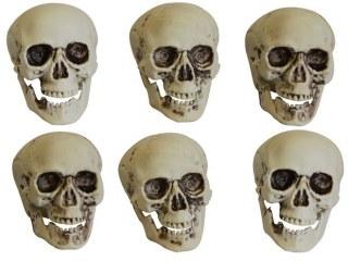 Tête de Squelette