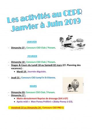 Planning des activités 2019