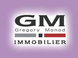 GM IMMO