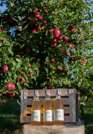 Le jus de pommes