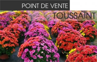 Point de vente Toussaint