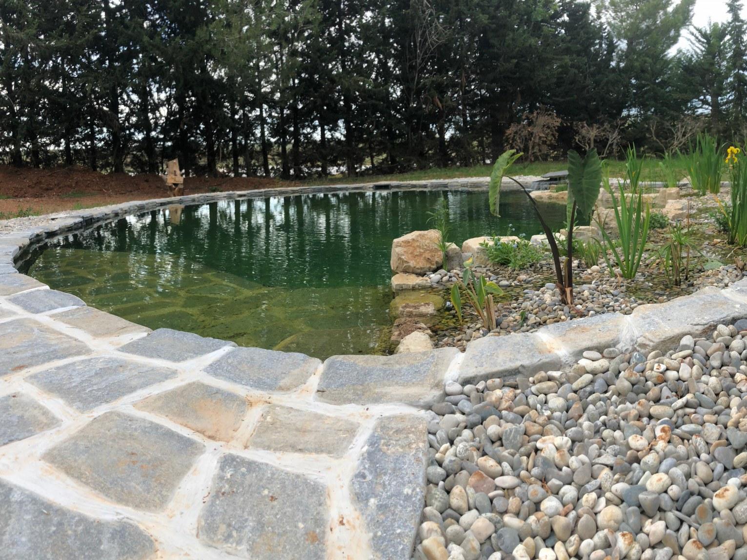 bassin baignade 2