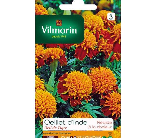 Vilmorin semence oeillet d'Inde