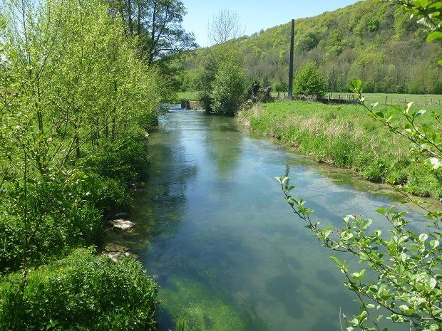 Caux austreberthe Rivière