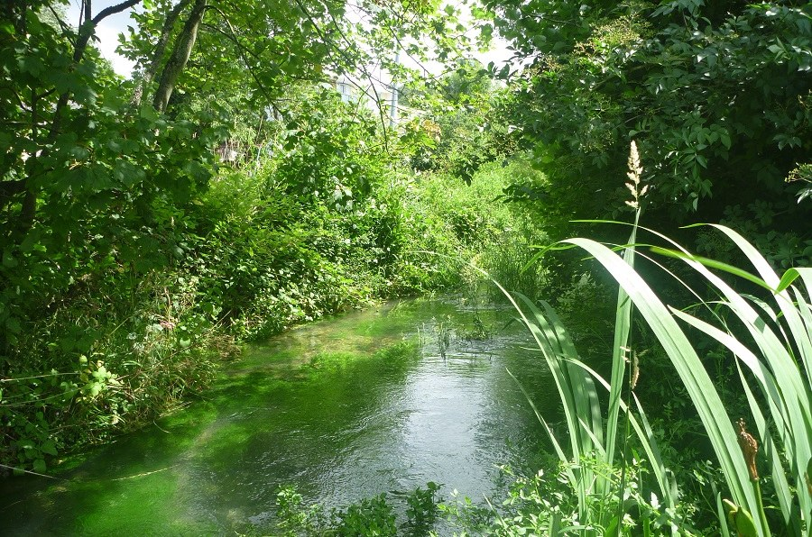 Seuil eaux souterraines communauté de communes caux austreberthe