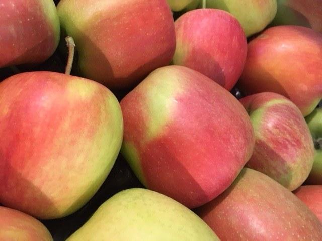 Pommes Delbart