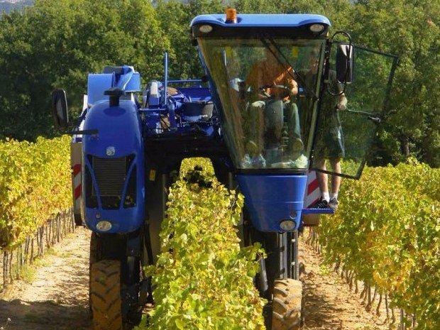 Expertise foncière et agricole