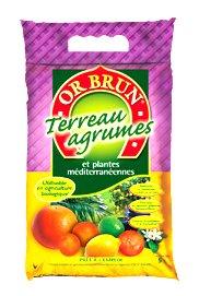 Terreau agrumes Or Brun