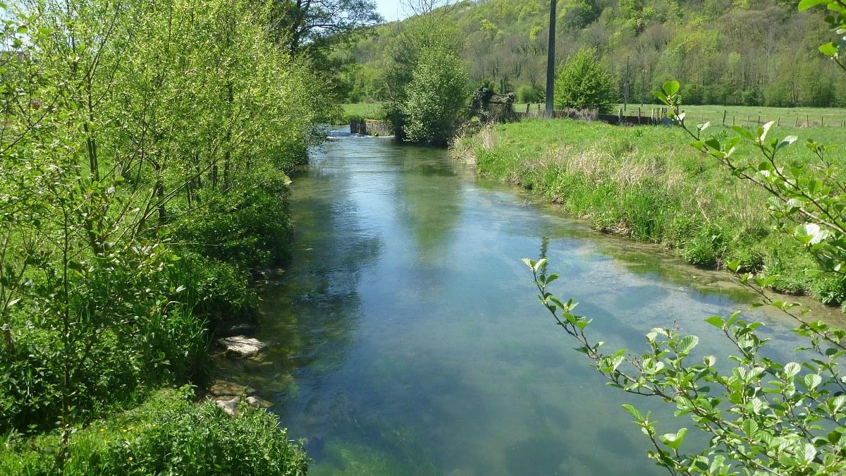 Communauté de communes caux austreberthe rivière