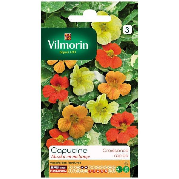 Vilmorin frontignan semence capucines