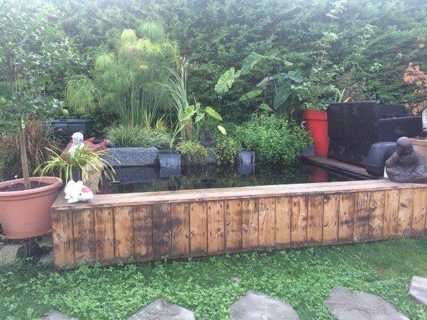 cr er un jardin aquatique natur bassin natur bassin. Black Bedroom Furniture Sets. Home Design Ideas