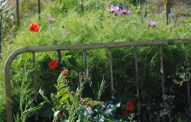 Communauté de communes caux austreberthe jardiner autrement