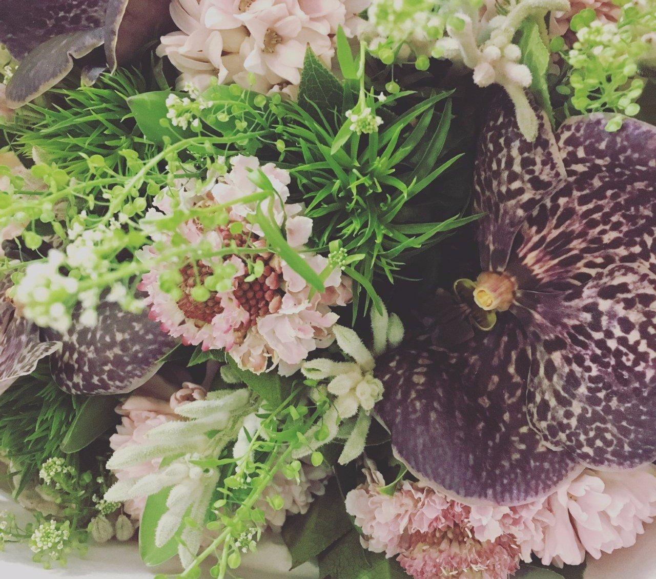 Bouquet scabieuse, thalspi, vanda