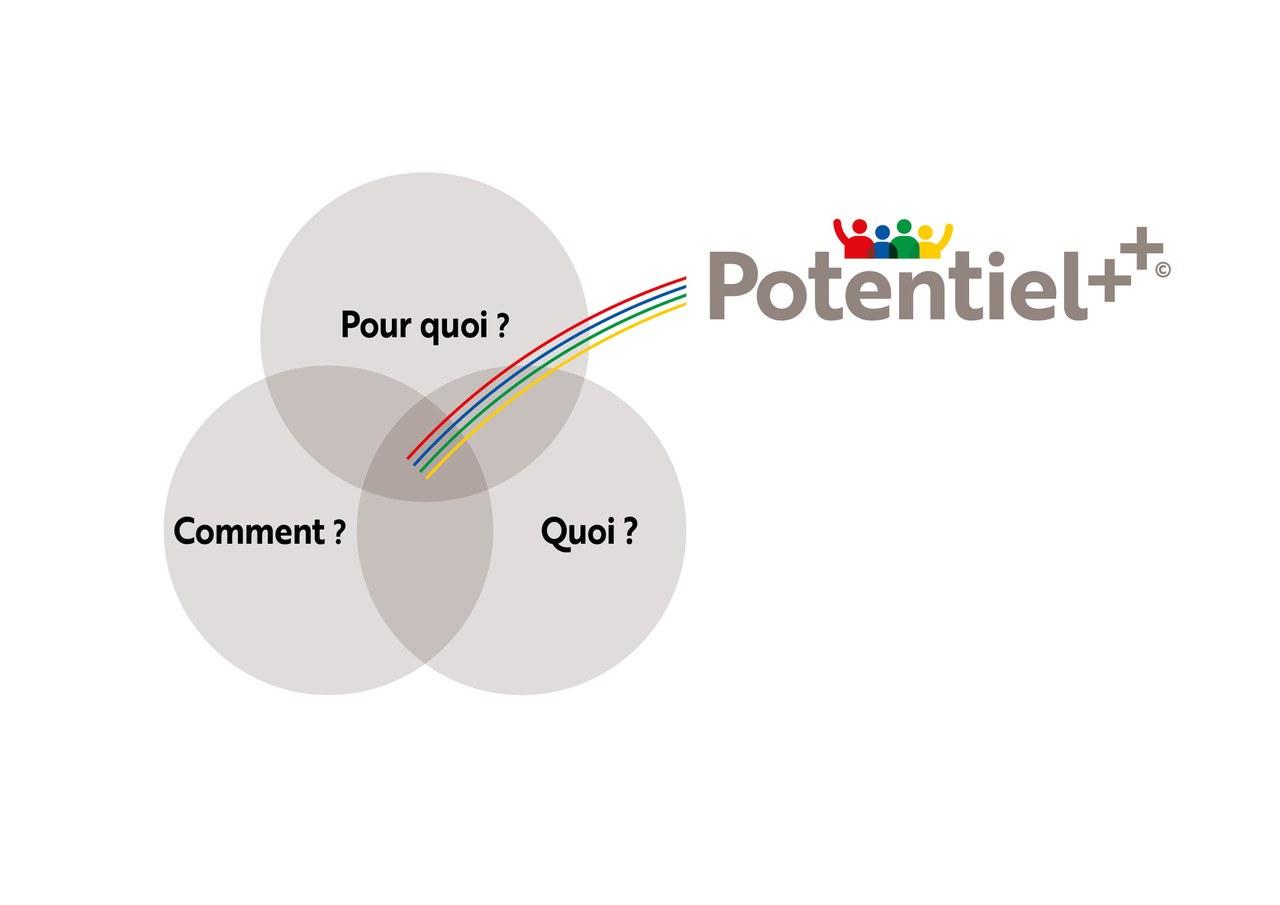 POTENTIEL ++ Schema 02[85018].