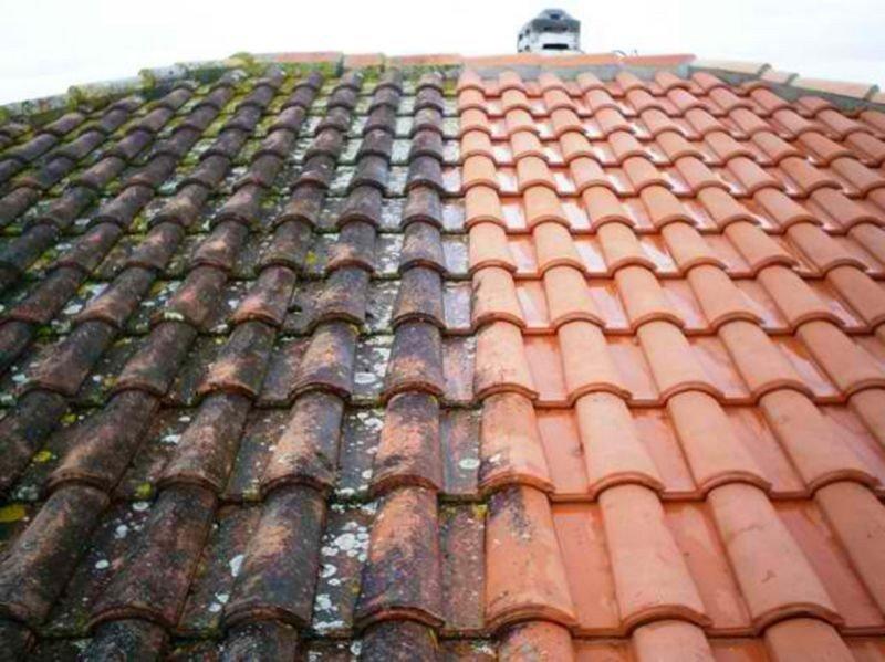 protectio et nettoyage de toiture