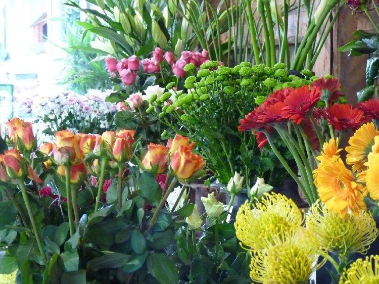 Fleurs Coupees Jardiland La Ravoire Jardinerie La
