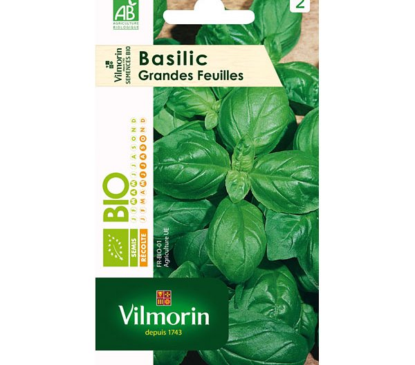 Vilmorin semence basilic