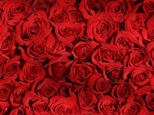 test st valentin