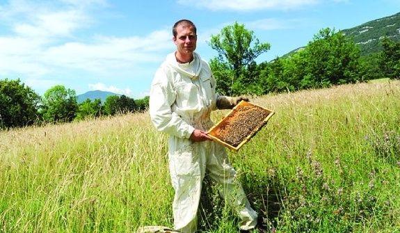 Cyril et ses abeilles