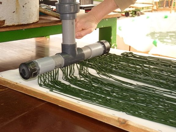 Fabrication spiruline